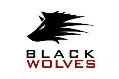 Black Wolves :